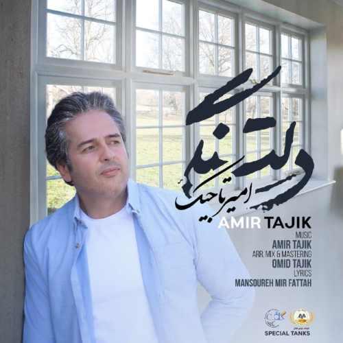 دانلود اهنگ جدید امیر تاجیک دلتنگی