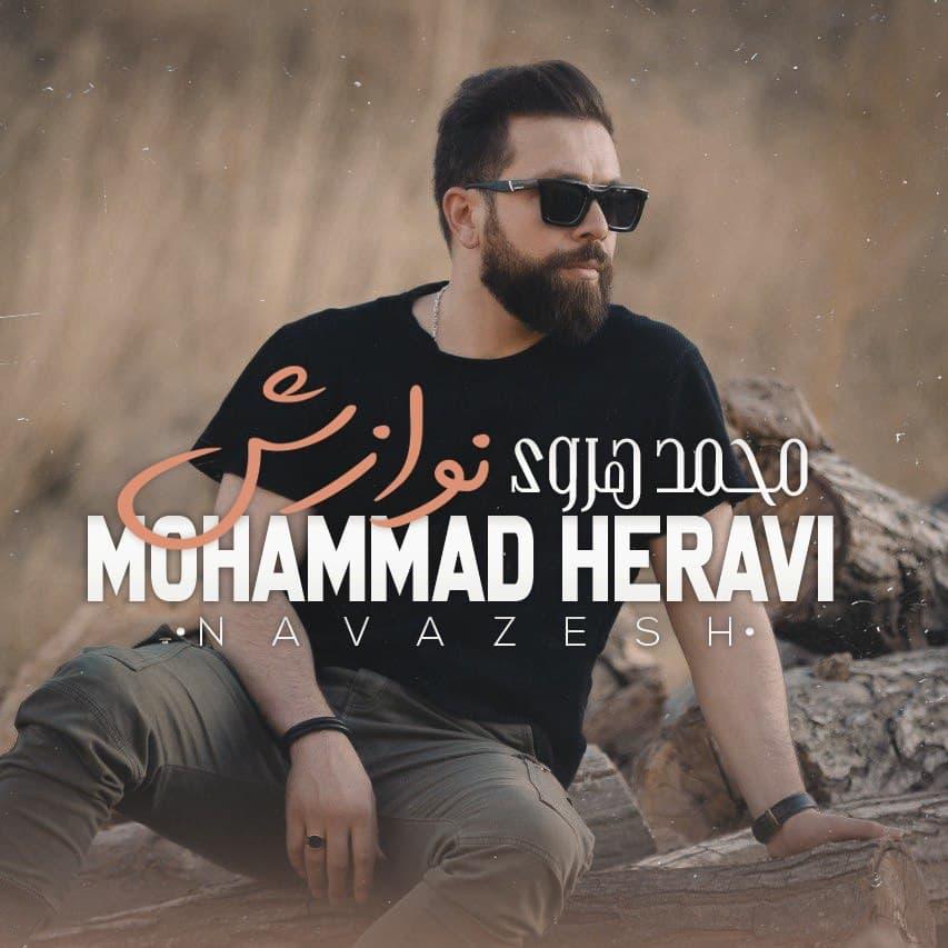 دانلود اهنگ جدید محمد هروی نوازش